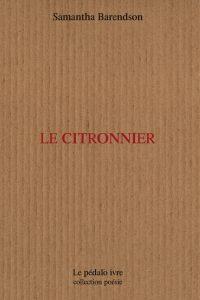 ISBN :979-10-92921-03-8 Format : 11 x 18 cm Nb pages : 80 Prix : 10 euros éditeur : Le pédalo ivre