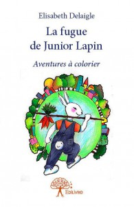 LA FUGUE DE JUNIOR LAPIN-COUVERTURE LIVRE fb